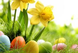 Bremennews wünscht ein schönes und frohes Osterfest