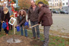 Ein gänzlich anderes Bewertungssystem – Bibliothek in Gröpelingen pflanzt Wunschbaum